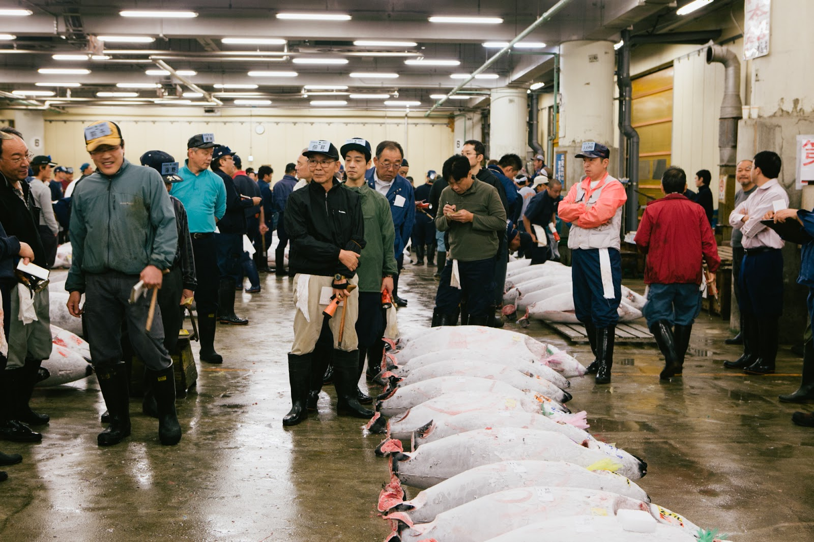 Japan archives see savour for Tsukiji fish market chicago