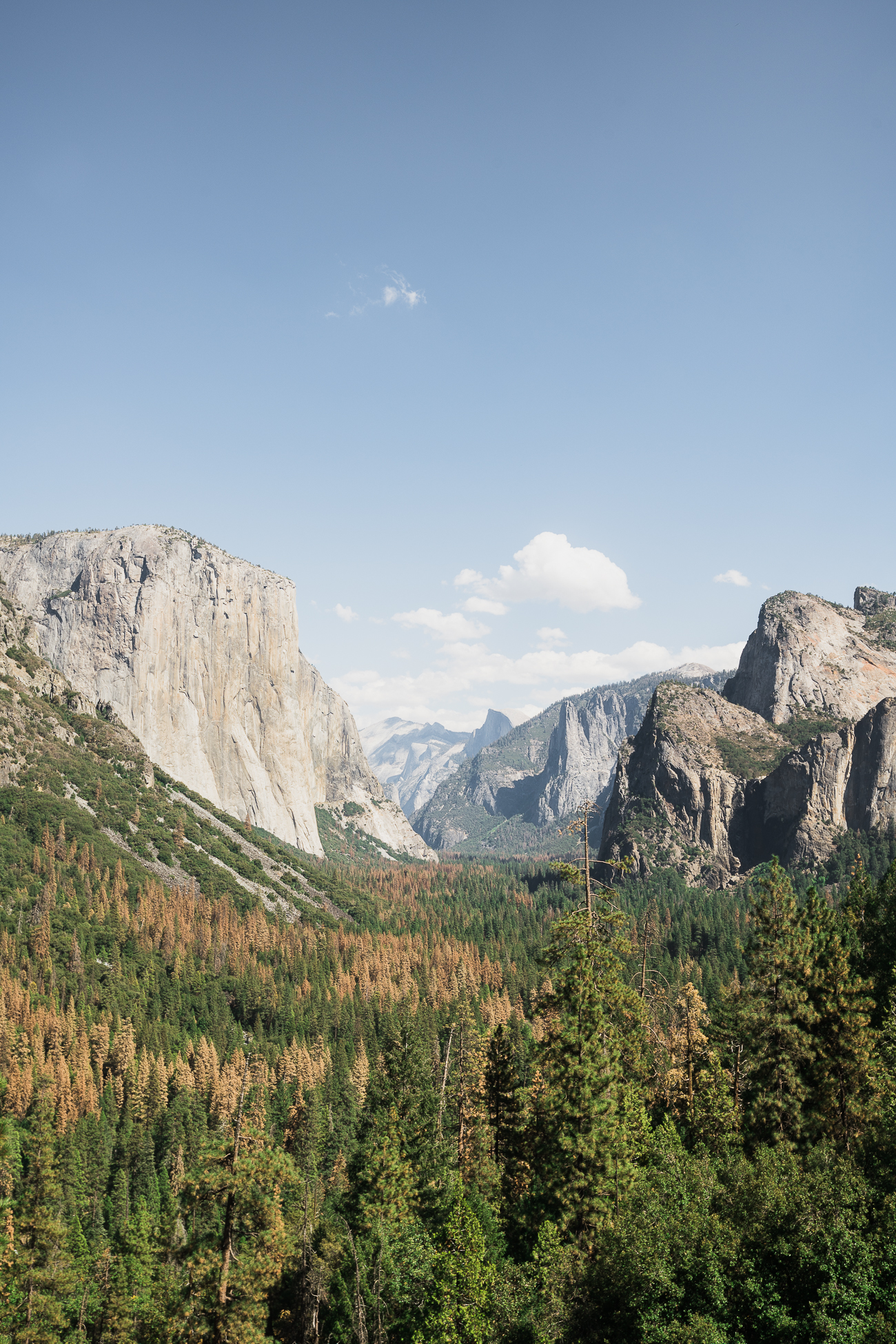 Tunnel View, Yosemite National Park / See & Savour