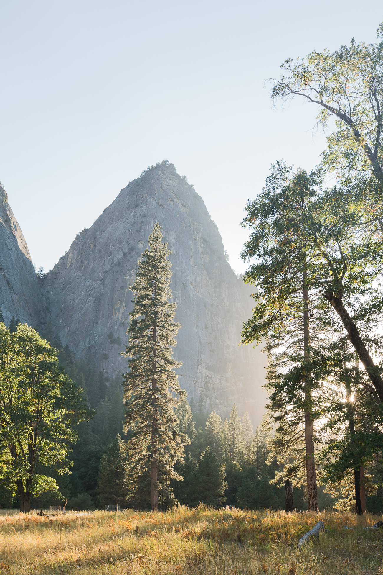 Evenings in Yosemite National Park / See & Savour