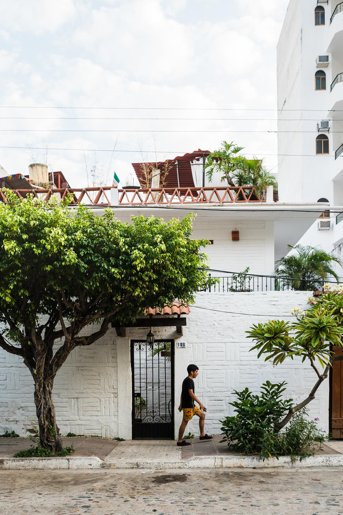 Wandering Puerto Vallarta / See & Savour