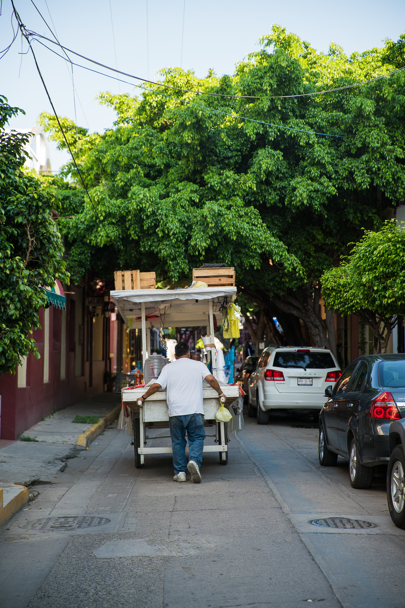 Mazatlan Streets / See and Savour
