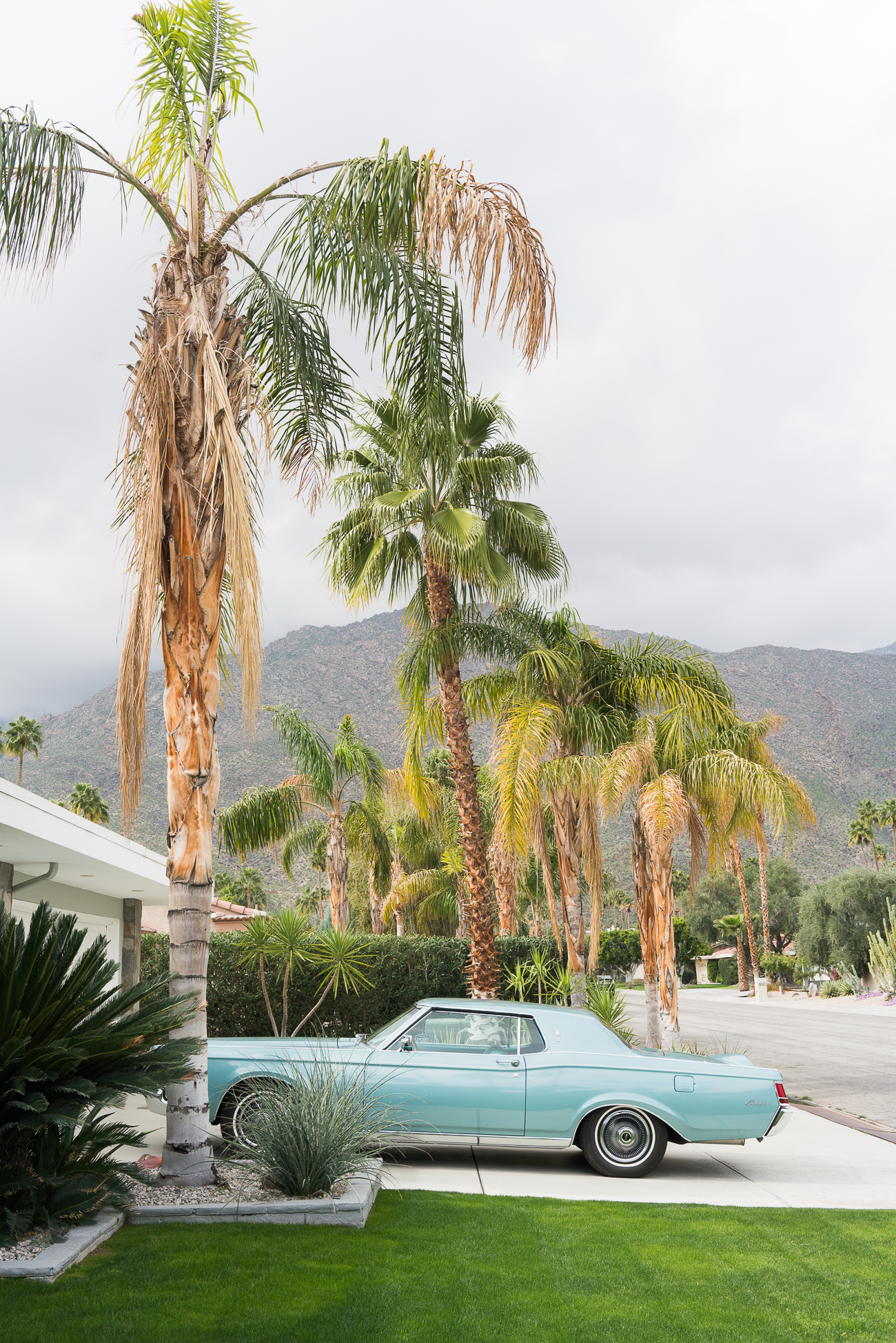 Modernism Week Palm Springs / See and Savour